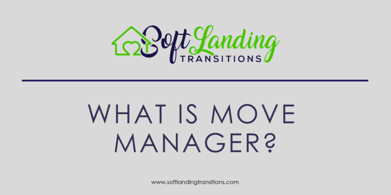 SLT - What is a Move Manager